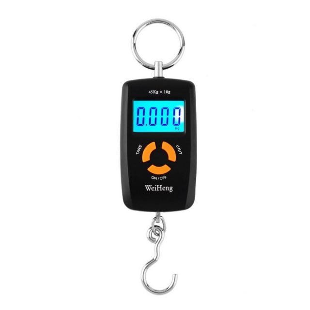 Mini LCD Portable Digital Scale for Fishing